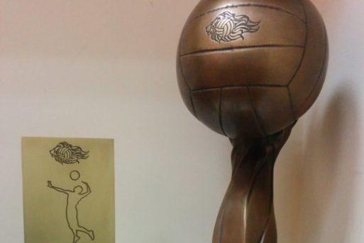 Інформація для вболівальників про Кубок з волейболу